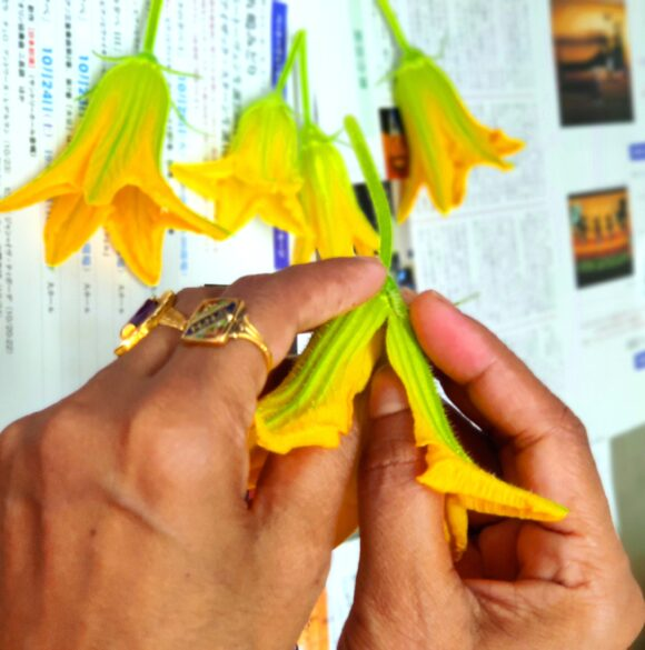 separate the petal, remove stalk and other parts of the flowers